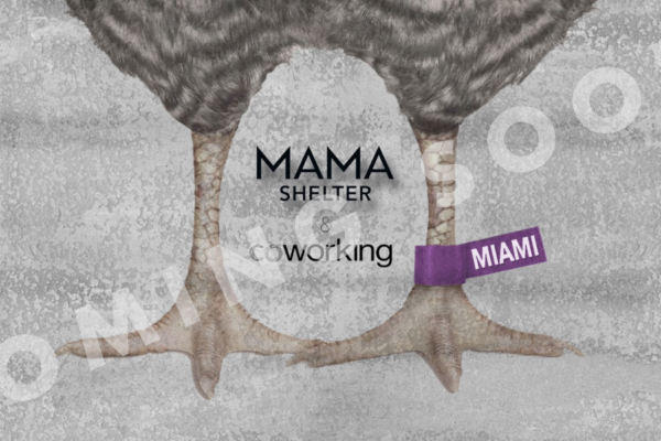 Wynwood / Mama